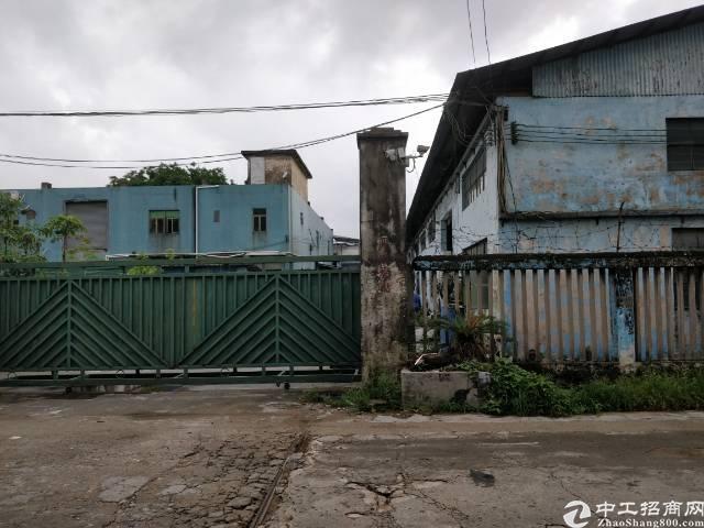虎门树田靠长安厦边独门独院铁皮厂房出租,水电齐全,靠近大市场