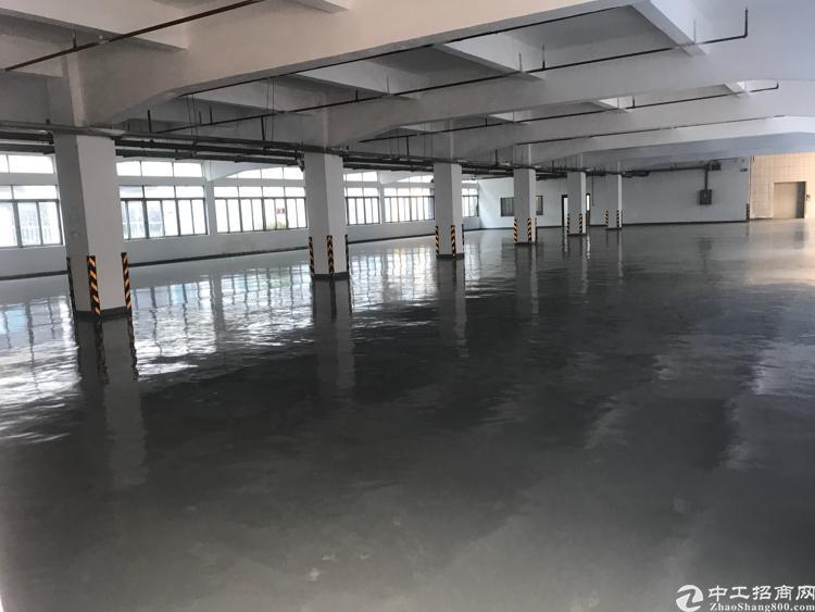 寮步新出独门独院标准厂房一楼可分租可整租