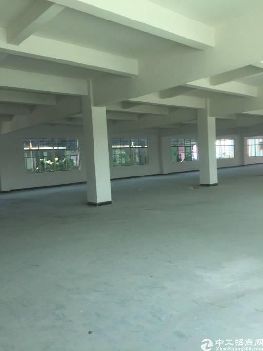 横沥新出独栋标准厂房。400平单价低至13块