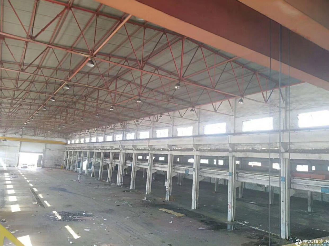 东莞虎门高速出口滴水10米高钢结构厂房独门独院