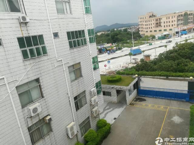 横岗新出独院厂房1-4层4800平出租,大小分租