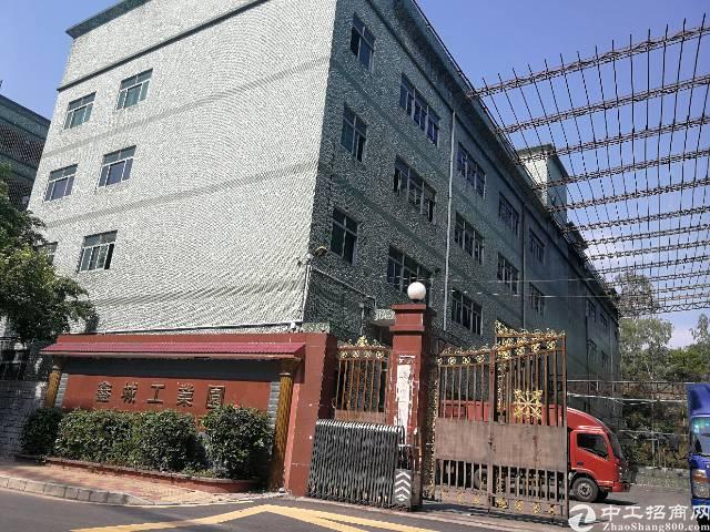 龙华大浪福龙路出口红本厂房18000平,大小分租