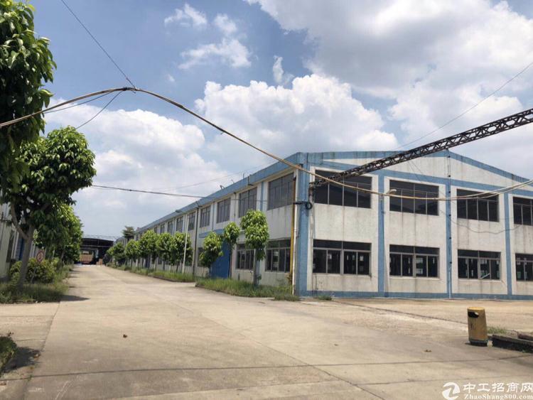 凤岗镇独立钢结构厂房10000平方米可按需租用