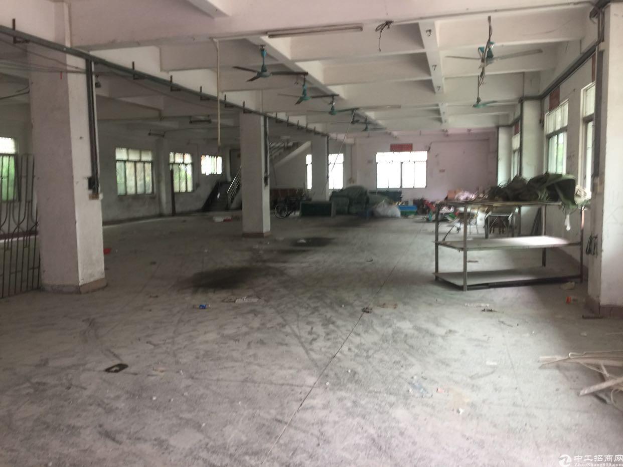 寮步大工业区标准厂房出租