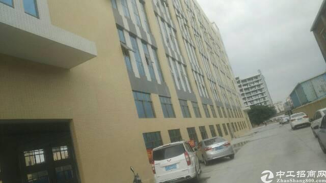 石排最新标准楼房