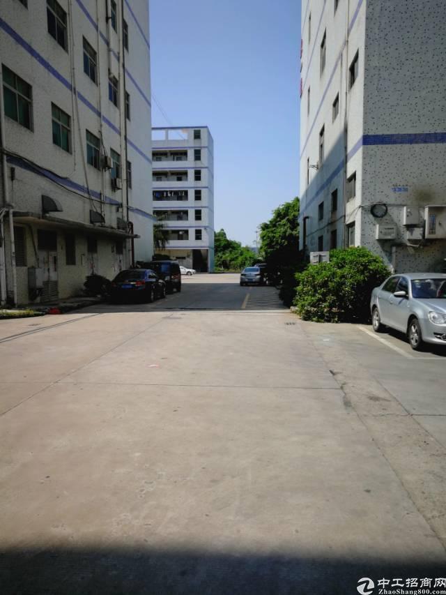 福永桥头宝安大道旁一楼1100平租35