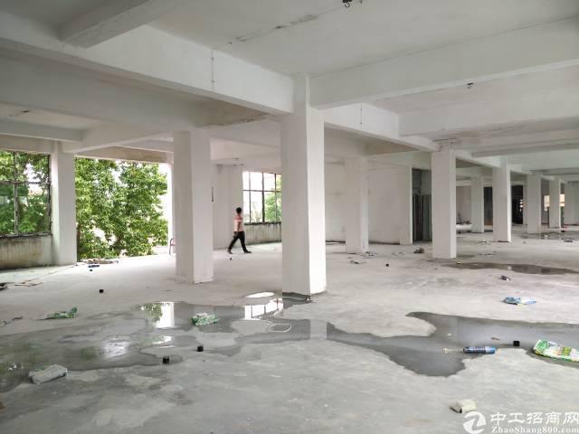 凤岗凤深大道旁4000平方独栋厂房出租,可分租