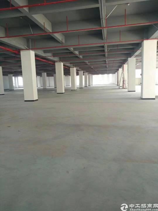 沙井地铁口零距离精装修厂房整层4000平可分租-图3