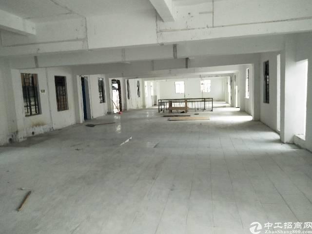 凤岗黄洞新空出标准厂房一楼400平