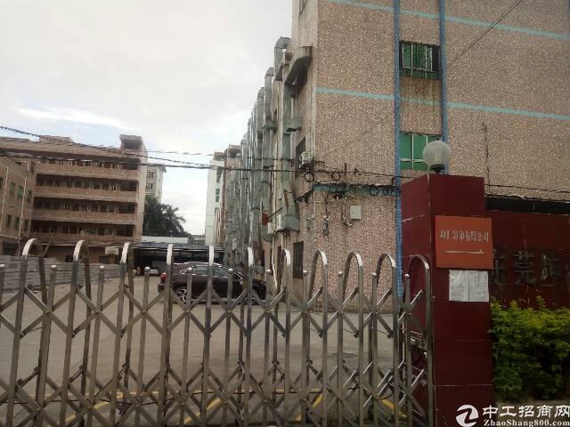 石排新出独门独院标准厂房1-3F5200宿舍1800