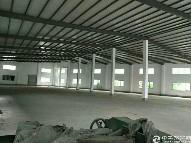 惠城区小金口新空出单一层钢构厂房(适合做任何行业)