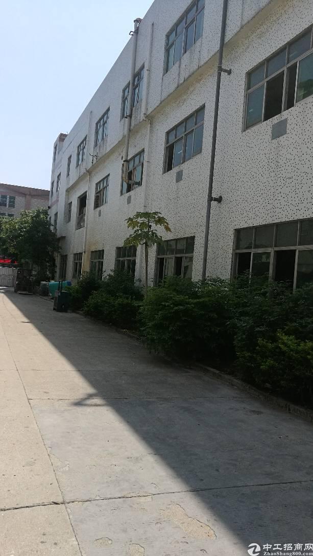 燕川新出厂房-图2