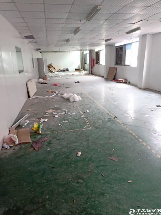 平湖中心小学旁二楼550平方标准厂房出租-图3