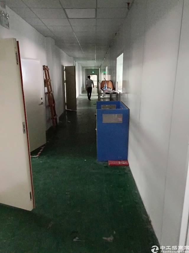 平湖中心小学旁二楼550平方标准厂房出租-图2