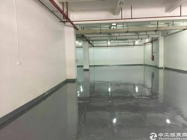 东城标准厂房全新仓库1500方