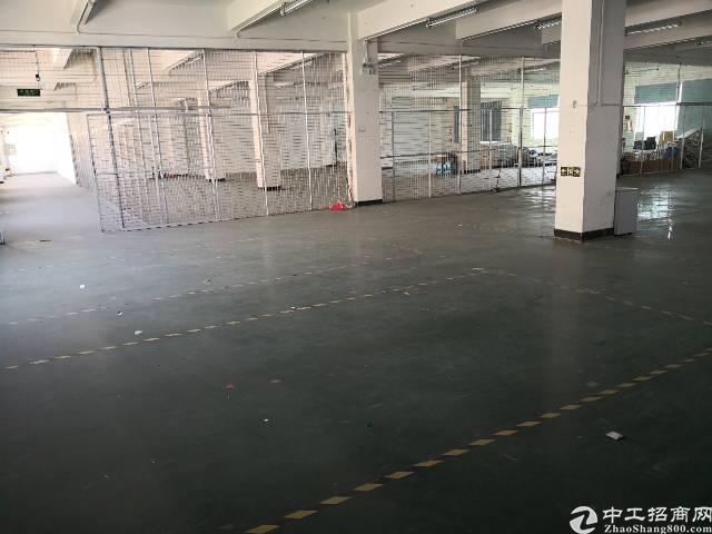 平湖新出来独门独院厂房5000平方出租