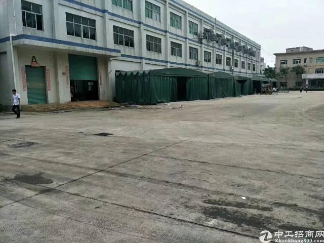 6月12号新出原房东标准厂房厂房3000平方出租
