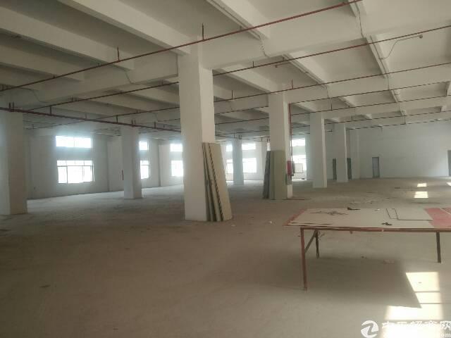 大朗杨涌全新一楼1080平方招租