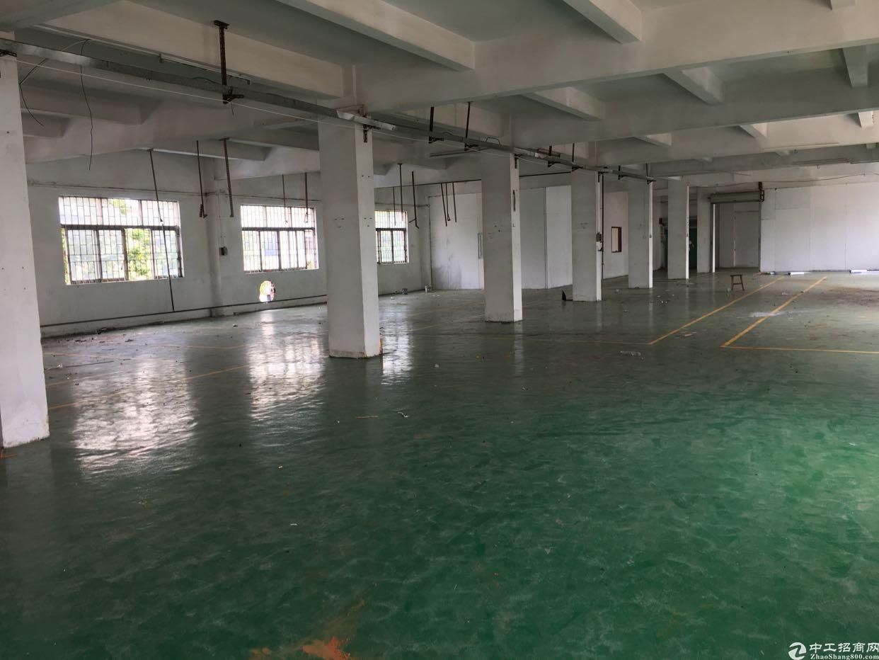 横沥新城工业区厂房2楼1200平方招租