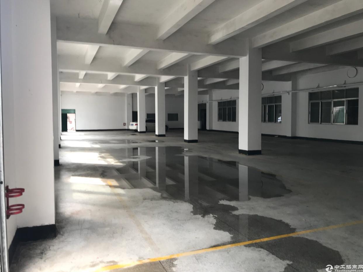 横岗安良社区,新出独栋厂房,5300平方米-图5