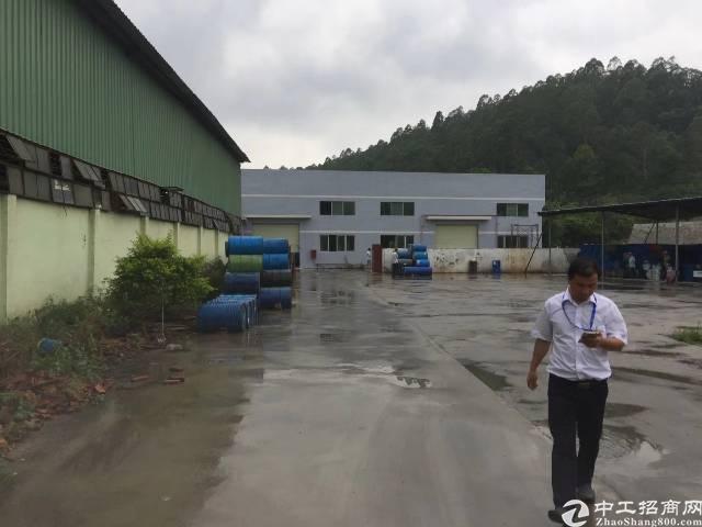 陈江镇工业区独院单一层钢构厂房1800平方滴水8米招租-图3