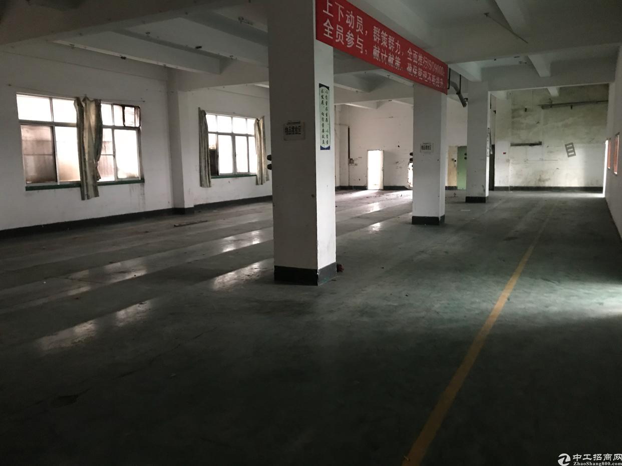 横岗安良社区,新出独栋厂房,5300平方米-图6