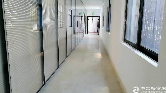 龙华大浪商业中心,600平写字楼招租