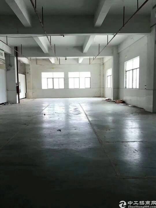 布吉一楼带卸货平台带装修1400平厂房招租
