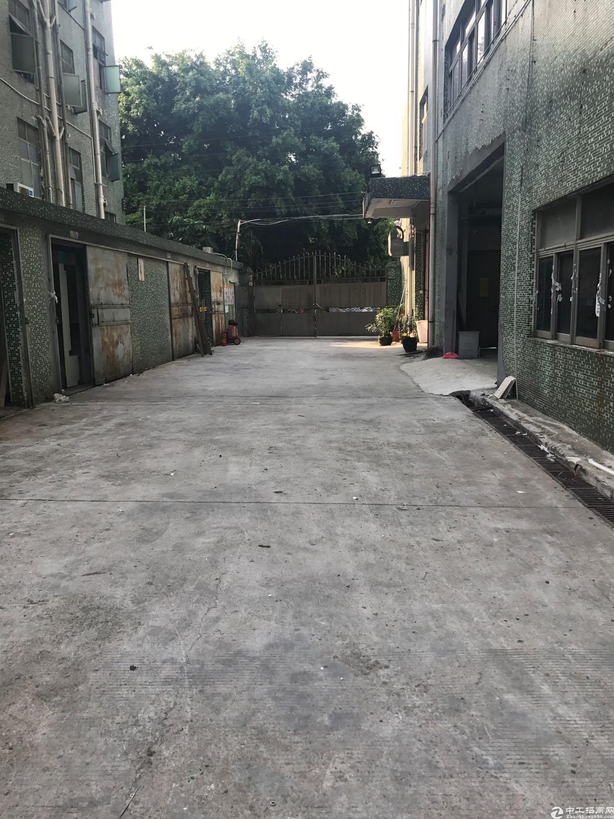 福永凤凰现有一楼1600平写字楼出租 独门独院 适合仓储