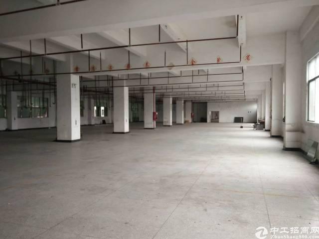 公明新出带红本花园式工业园重工业标准厂房