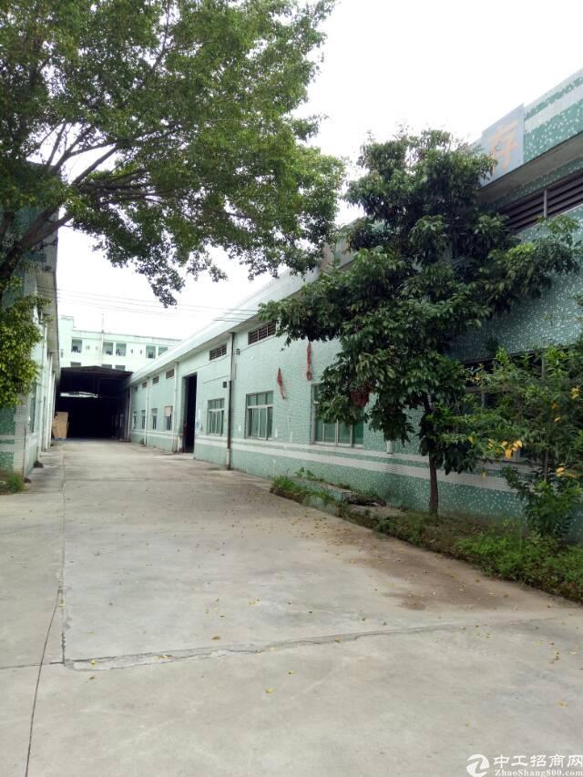 坪山区石井比亚迪附近工业园分租钢构1400平