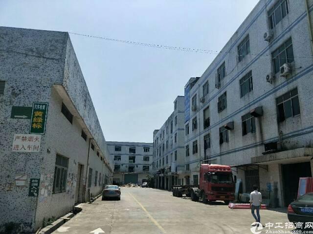横岗7米高钢构厂房2680平方出租