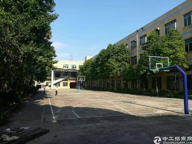 公明楼村靠近东莞新出原房东独厂房4800平米出租