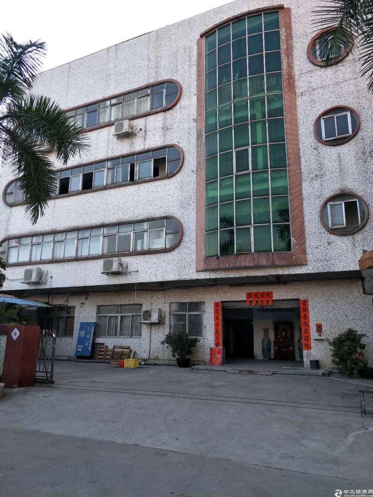标准厂房一楼900