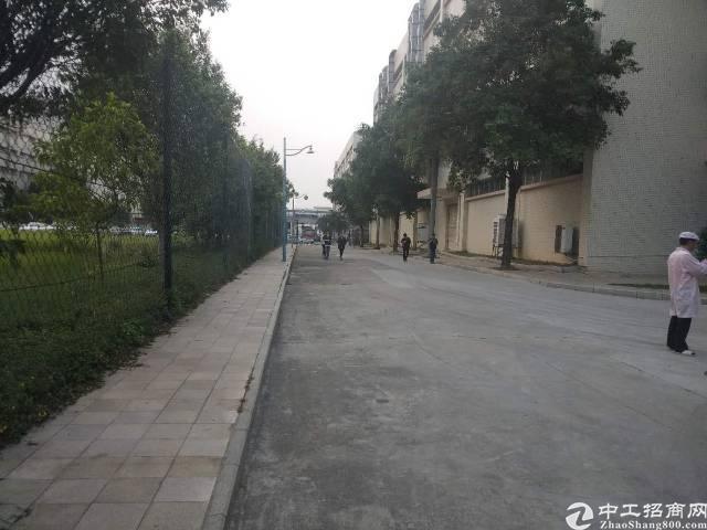 沙井步涌新出一楼450平米6米高厂房出租