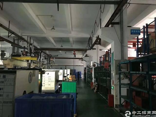 沙井新桥三工业区一楼1000平米6米高厂房出租-图2