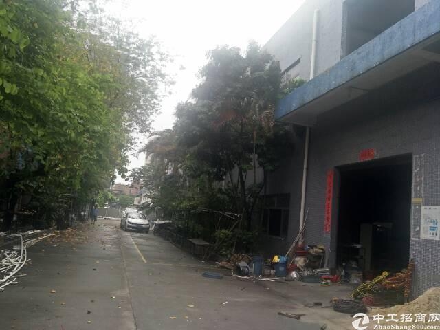 光明新区上村十月份空出原房东两层半3000平方厂房出租-图2