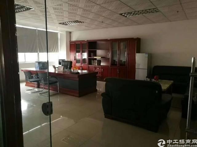 福永新和10000平方独栋厂房可分租-图5
