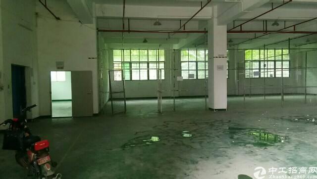 惠州市 仲恺高新区独院带装修厂房出租