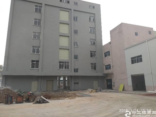 凤岗目前唯一一个全新原房东独院厂房出租