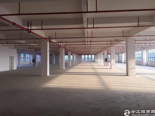 凤岗镇浸校塘新出独门独院带卸货平台标准厂房1楼2760平