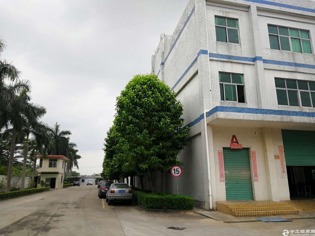 坪山新出独院一楼3000平米,层高5.2米