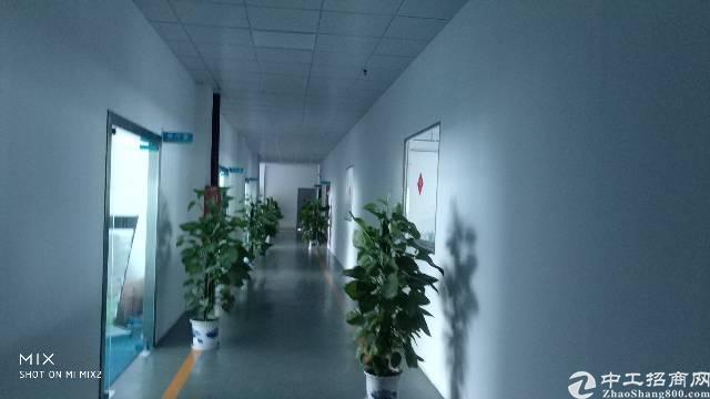 宝龙工业区办公室1100平出租