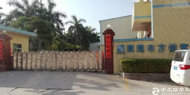 茶山单一层砖墙到顶钢构厂房2600平米出租