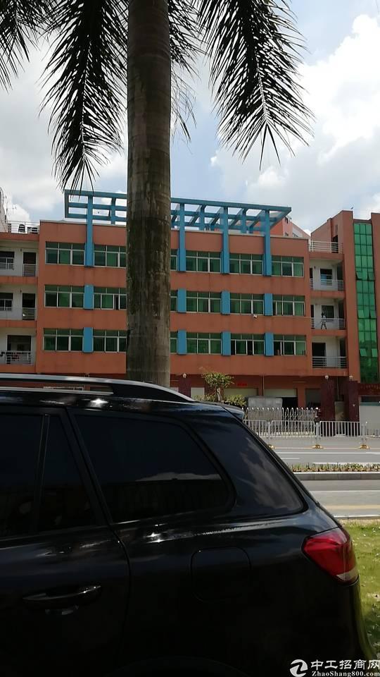东莞市企石大道边国有证厂房3500平方米出售