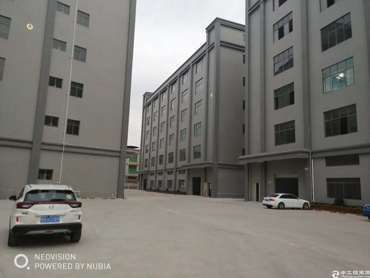 石碣镇中心城区新出独院厂房分租一楼1000