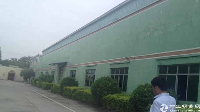 广州市增城区新塘镇厂房出租-图2