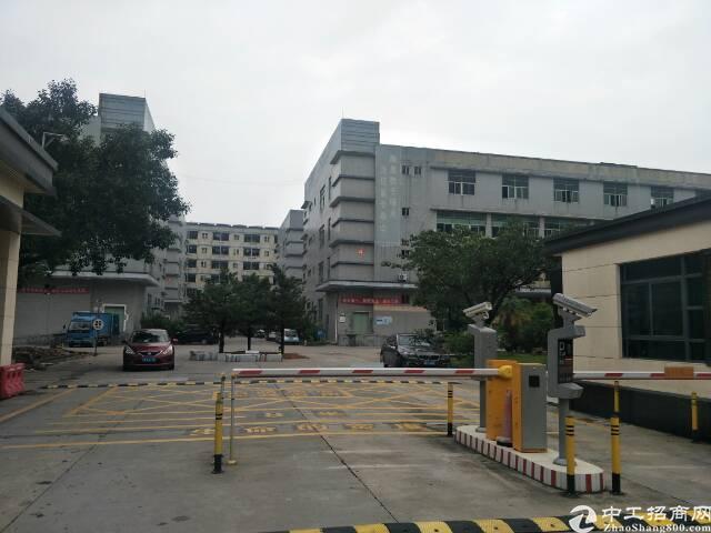 福永桥头独院厂房楼上700平米精装修出租