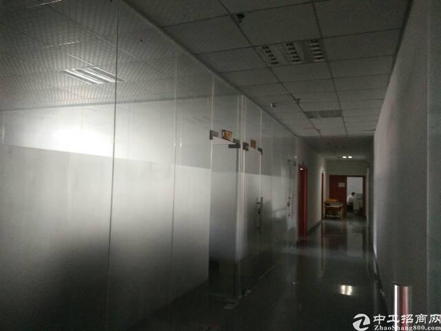 光明新区原房东一楼1850平方招租-图3