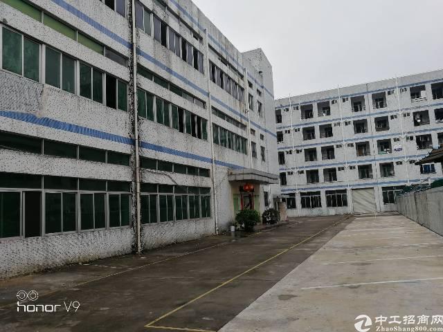 公明新出原房东独院5400平米带豪华装修厂房低价出租